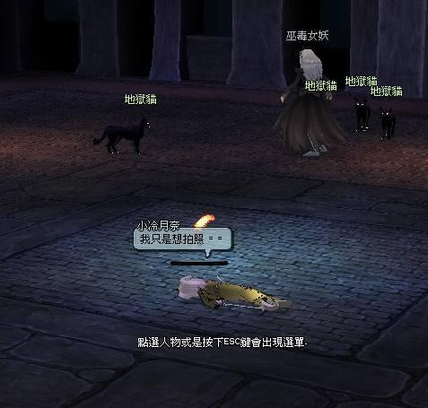 黑貓打死我就跑了...