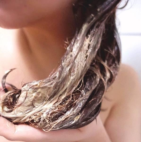 L'Oréal巴黎萊雅 金緻護髮精油洗髮露/霜