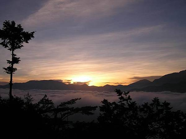 阿里山日出.jpg