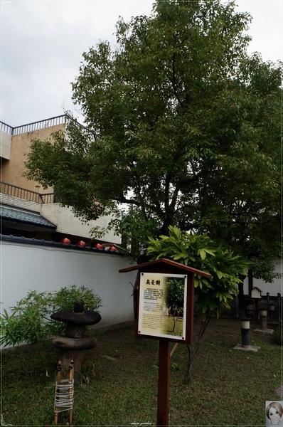 花蓮吉安慶修院:[花蓮爆點一日遊]花蓮 慶修院~不用飛日本也能參拜日本神社