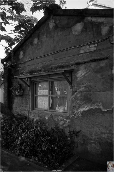 信義公民會館 (四四南村):[信義幹線攻略]台北 捷運101站 四四南村~文青之小賣場