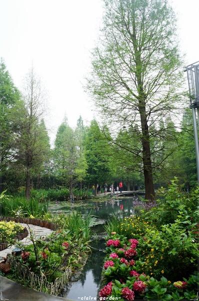 菁芳園 (田尾休閒農場)(Tenway Eco-Leisure Farm):彰化 菁芳園~迷離夢幻的森林景點