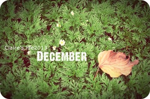 2013.12月封面