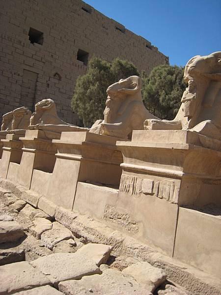 IMG_0926 卡納克阿蒙神殿