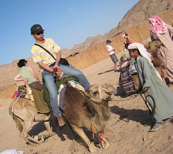 IMG_1235-1-張大哥,不好意思哦!把這張放上來是要讓大家了解上下駱駝是件可怕的事