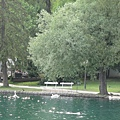 096.布雷德湖(Bled Lake)