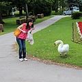 Slovenia 布雷德湖-120606-212