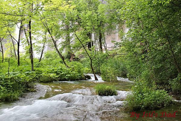Croatia, Plitvice N. P.-120608-093-上湖區
