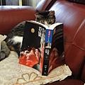282.認真看書的貓