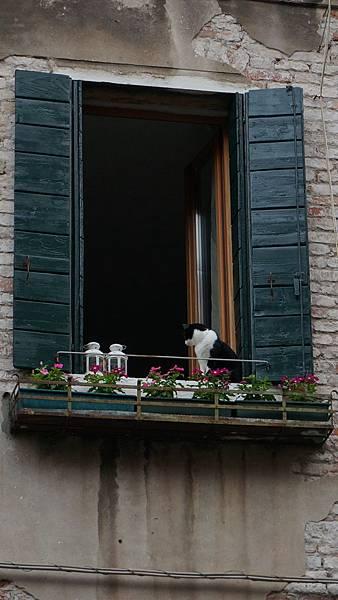 DSC03216.Venezia
