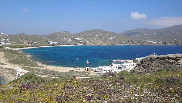 1712.Wild flowers and Aegean Sea