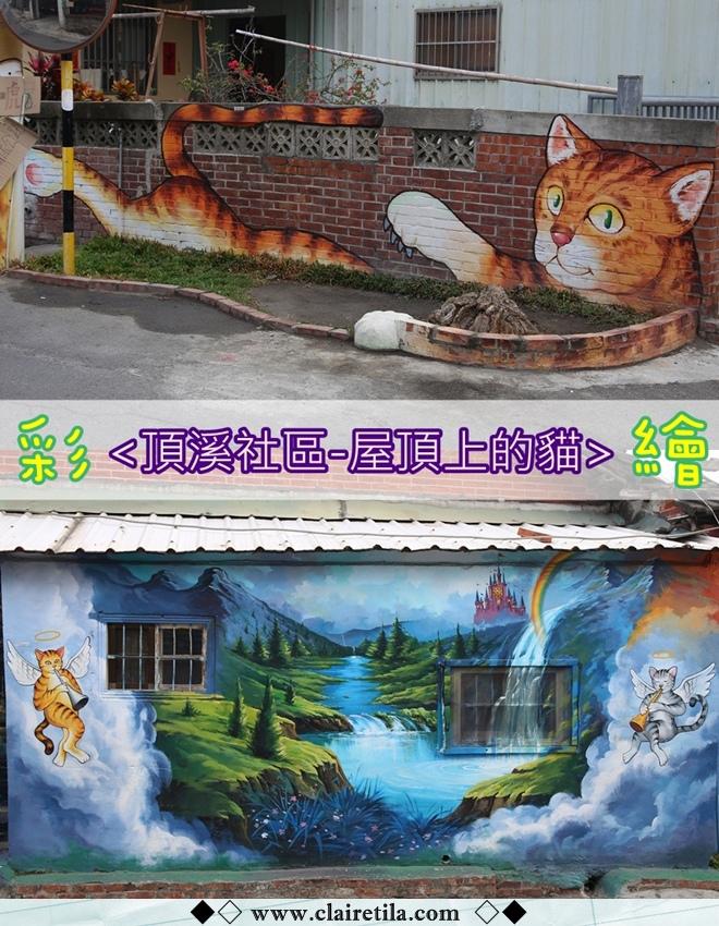 頂溪社區-屋頂上的貓 (1).jpg