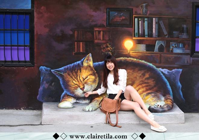 頂溪社區-屋頂上的貓 (13).JPG