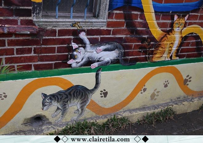 頂溪社區-屋頂上的貓 (28).JPG