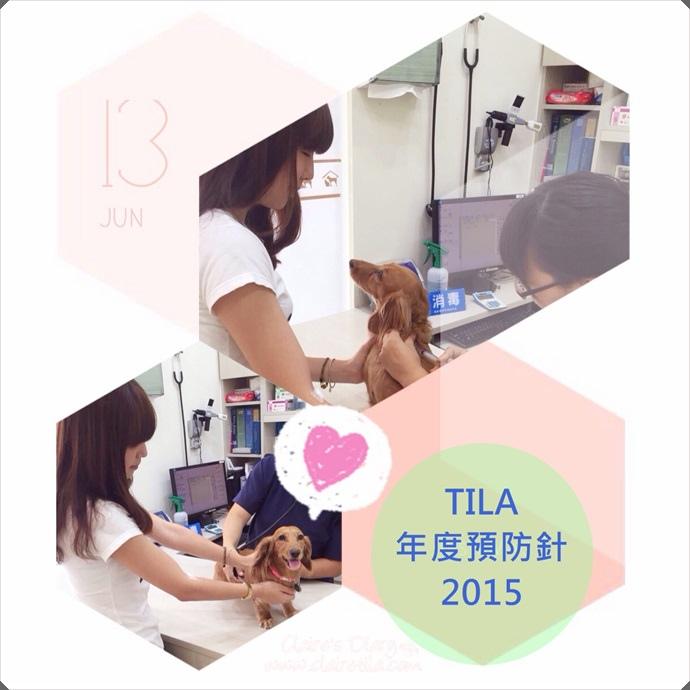 2015年度預防針‧景美大群動物醫院 (1).JPG