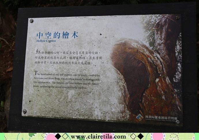 太平山 翠峰湖 (15).JPG