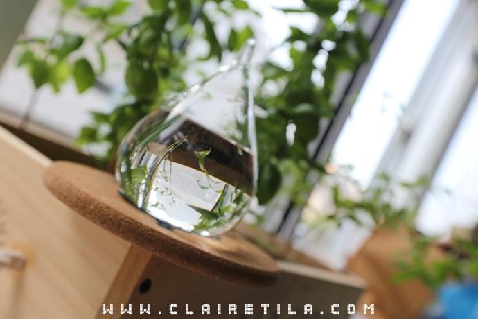 天氣預報瓶Storm Glass (8).JPG