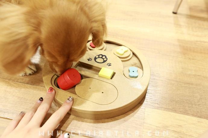 Tila-Intelligence Toys (8).JPG
