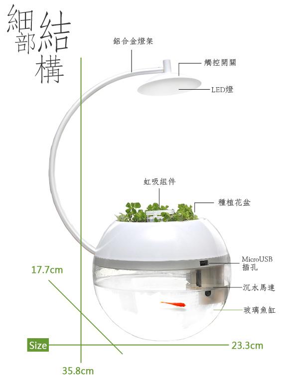 香草與魚 (4).jpg