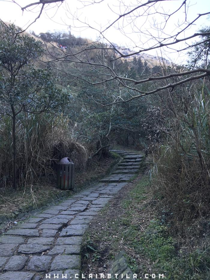 七星山 夢幻湖 (8).JPG