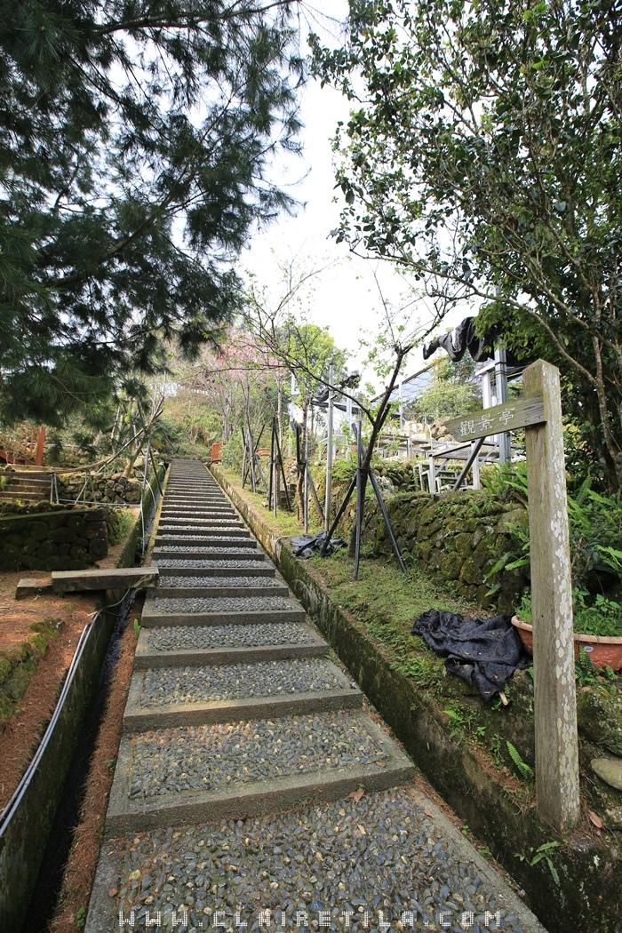 7「蟬說:鳳凰亭序」觀景迴廊、櫻花步道 (4).JPG