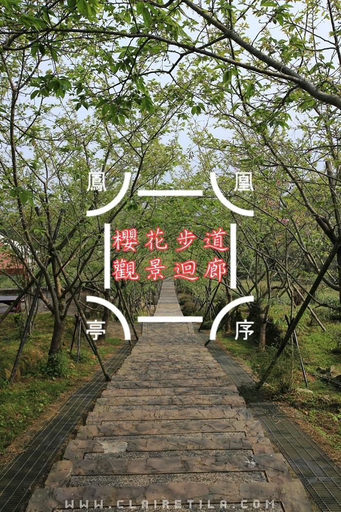 7「蟬說:鳳凰亭序」觀景迴廊、櫻花步道 (1)...JPG