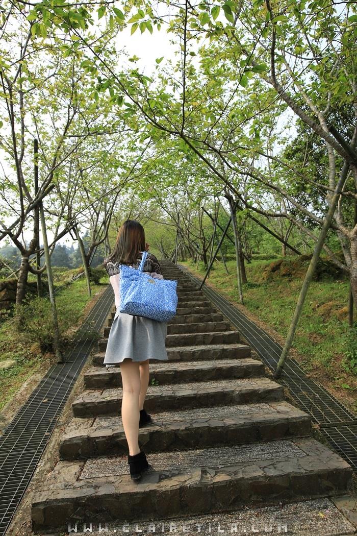 7「蟬說:鳳凰亭序」觀景迴廊、櫻花步道 (12).JPG