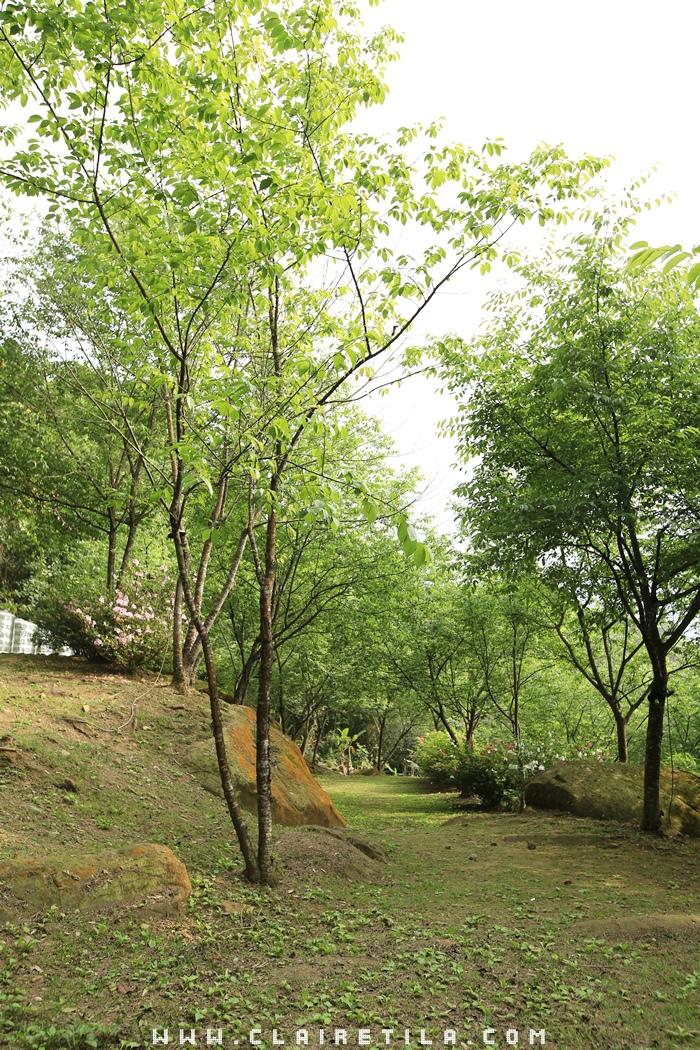 花岩山林-寵物友善花園景觀餐廳 (15).JPG