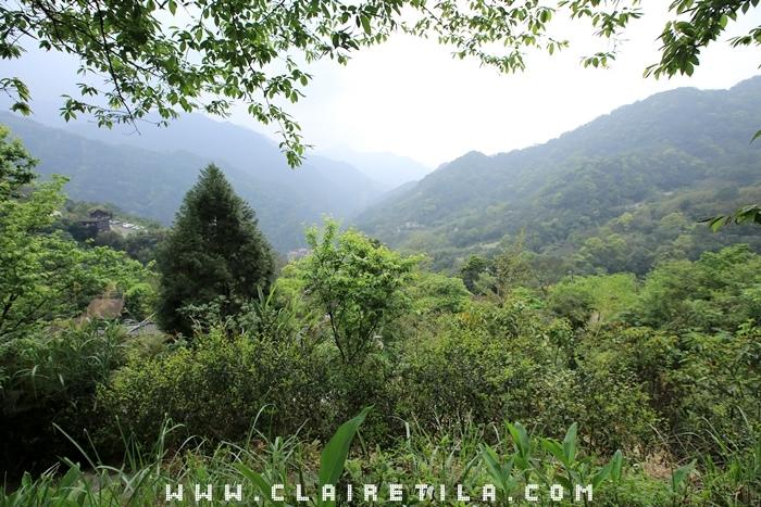 花岩山林-寵物友善花園景觀餐廳 (23).JPG