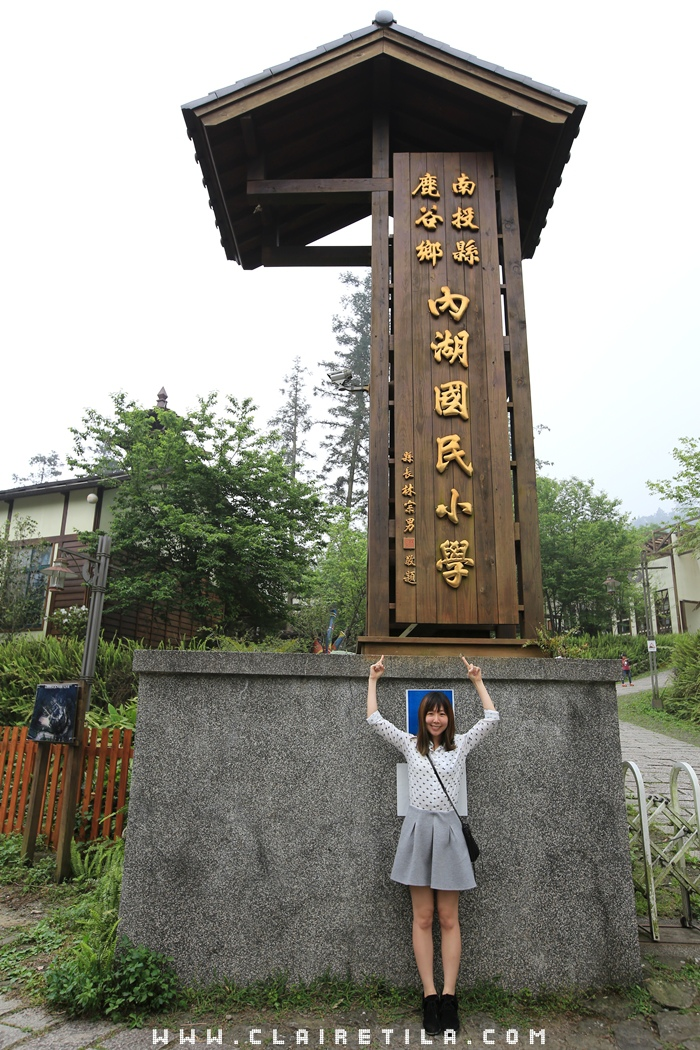 鹿谷 內湖國小 (1).JPG