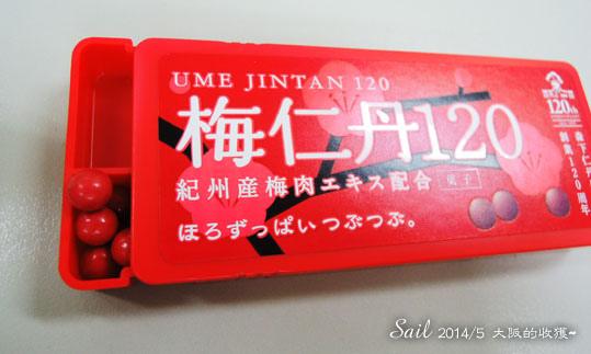 10405-梅子系列04.jpg