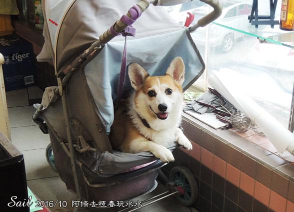 10510牛大福-01.jpg