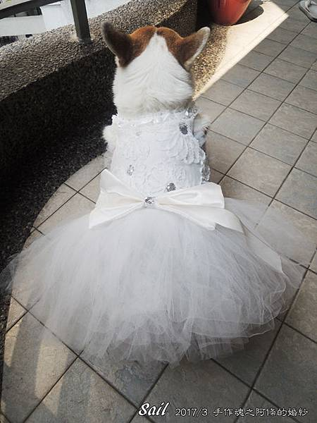10603-婚紗06.jpg