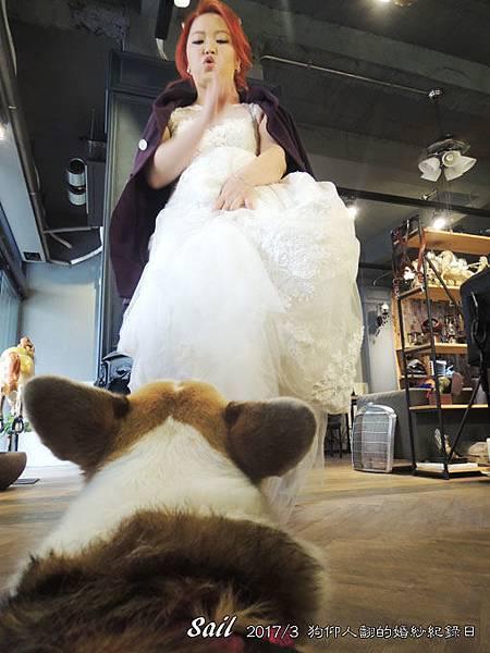 10603-婚紗12.jpg