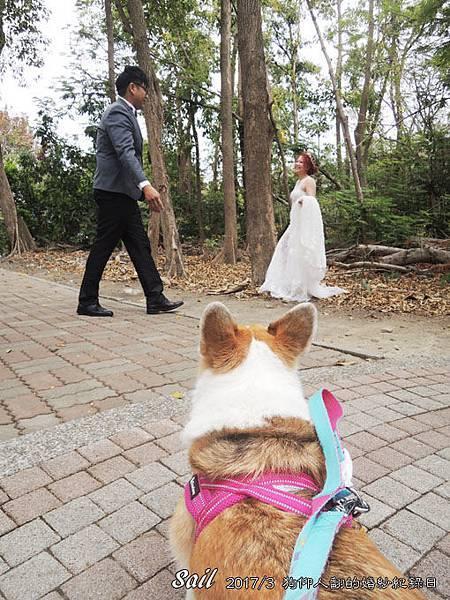 10603-婚紗16.jpg