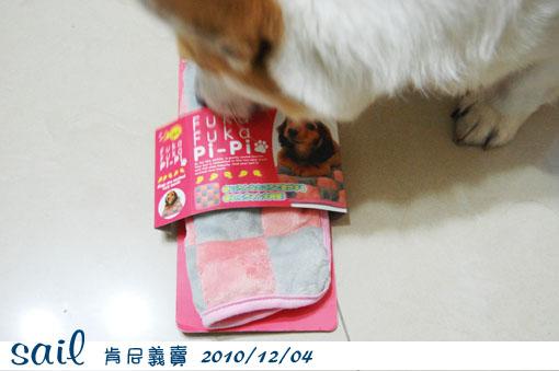 20101204-義賣1.jpg