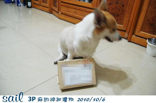 10106-3P麻禮物1.jpg