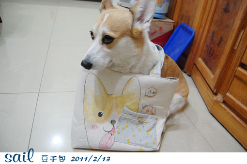 20110213-豆子包2.jpg