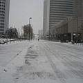 能想像這就是Downtown Denver嗎?!