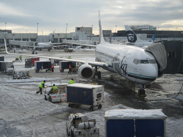 Flight 312 back to SFO