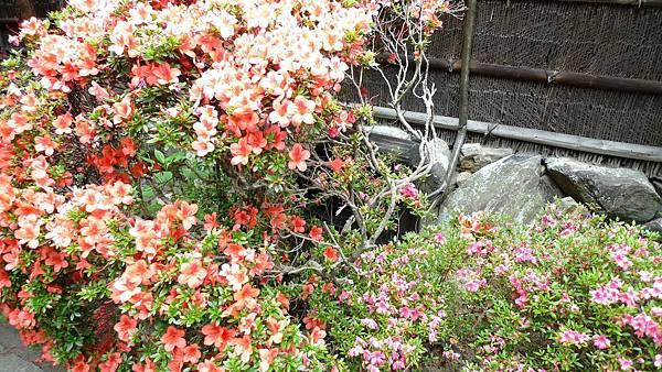japan 06.2013 057.jpg