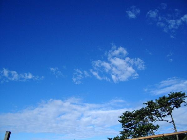 北橫公路的藍天天.JPG