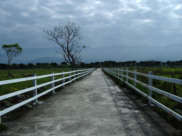 遙遠漫長的牧場外圍~.JPG