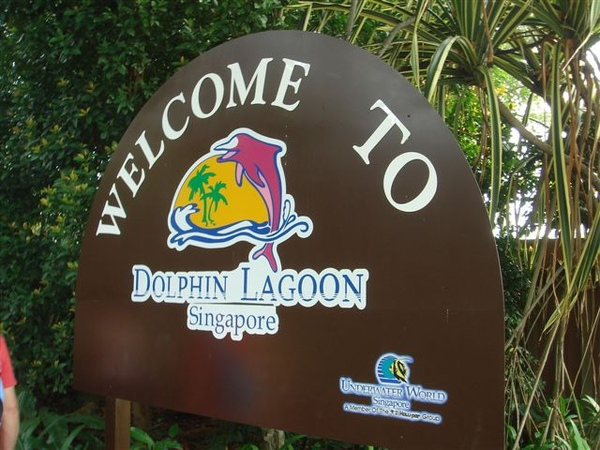 WELCOME TO Dophin Lagoon!!