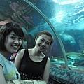 underwater水族館