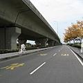 加自行車道指示系統-高架下方自行車道穿插-右側自行車道_clark.jpg