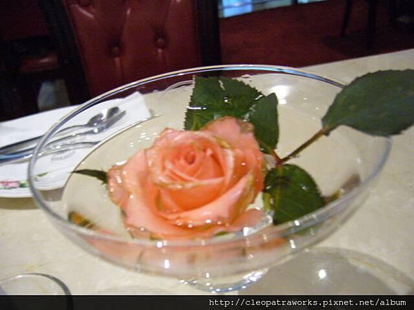 玫瑰園201007_04