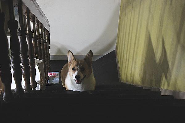上樓梯.jpg