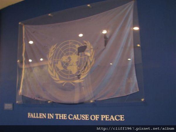 受難的聯合國會旗