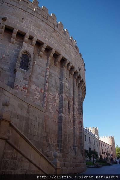 Cimorro de la catedral.